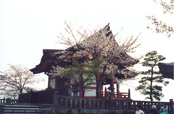 Kyoto'dan bir manzara.