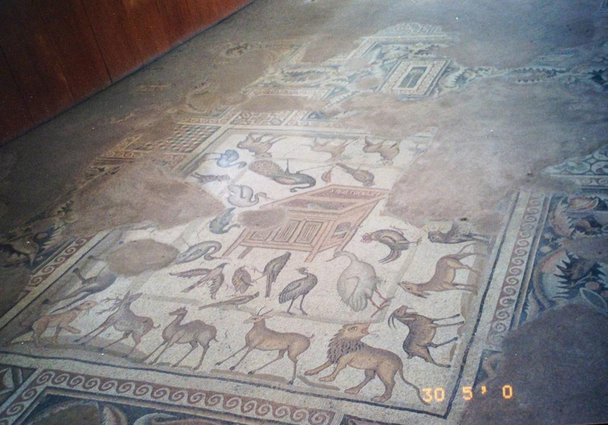 Adana gezimizde şehrin dışına çıkıp Misis antik kentine de gitmiştik. Burası Ceyhan Nehri kenarında, tarihi İpek Yolu üzerinde yer alan, ilk kuruluş tarihi bilinmeyen bir kent. Bazı kaynaklarda Troya ile aynı zamanda kurulduğu (hangi dönemi ile aynı zamanda?), bazı kaynaklarda Homerik Troya ile aynı zamanda kurulduğu ( bu durumda MÖ 1300 ), bazı kaynaklarda ise Misis'i Troya kahramanlarından Mopsos'un kurmuş olduğu söylenmektedir. Kent tarih boyunca pek çok kez el değiştirmiştir. Misis Mozaik Müzesi'deki bu tablonun ortasında bir masa veya sehpa şeklinde yapılmış bir kümes ve etrafında Nuh Peygamber'in tufanda gemisine aldığı 23 adet kuş ve kümes hayvanları, bu grubun etrafında ise vahşi ve evcil hayvanlar yer almaktadır. Eser M.S. 4. yüzyıla aittir.