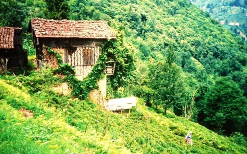 """Karadeniz'in eğimli arazi yapısı nedeniyle dağların eteklerine kurulan bahçelerde yetişen bu bitkiye, uzun süre """"yeşil altın"""" adı verildi. Rize, İkizdere Vadisi'nde sebze bahçeleri içinde çay ekimi."""
