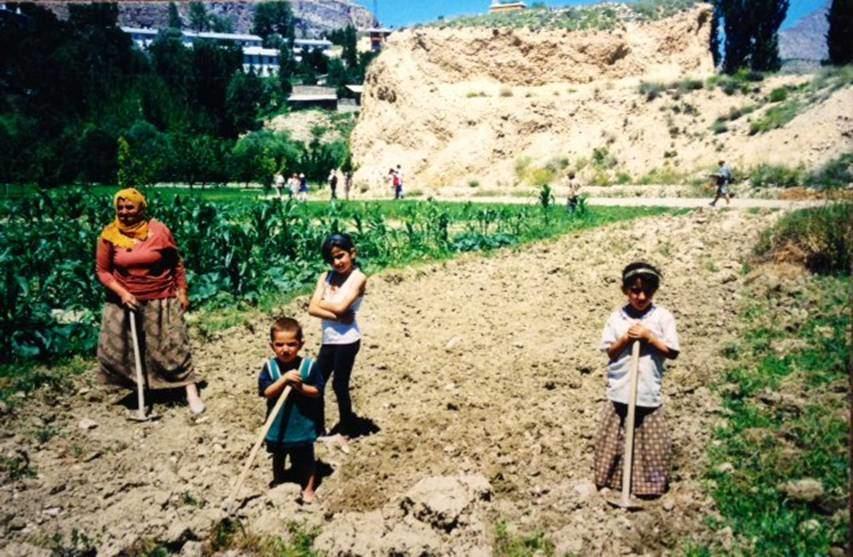 Çoruh Vadisi'nde yediden yetmişe tarım ile uğraşan Artvinli aile.