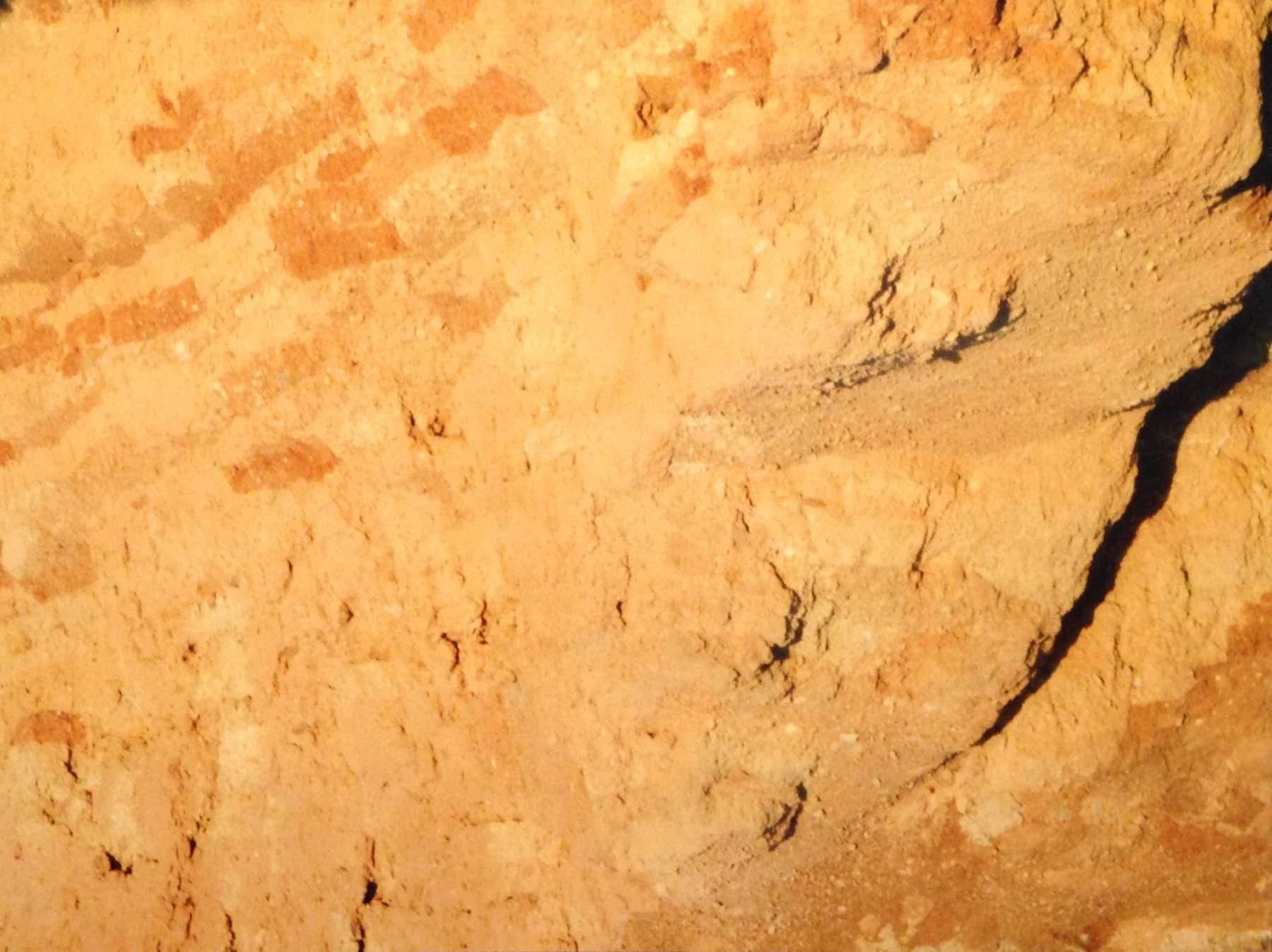 Ebla'daki L. 2769'da bulunan en büyük tabletler raflar üzerinde, tabii ki devrilmiş halde, dizilmişken, Nippur'da tabletler bir raf üzerinde kitapların durduğu gibi dikey duruyordu. Tell Mardikh Kasabası'nda Ebla Şehir Devleti kazıları, Suriye.