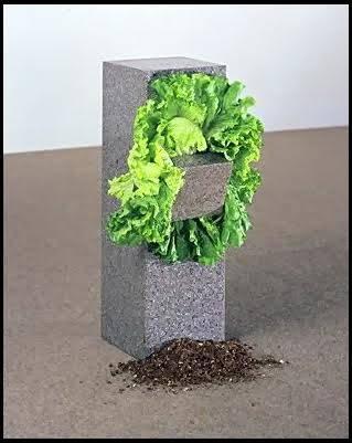 Adsız veya Salata Yiyen Heykel, Giovanni Anselmo,1968. Bu eser sanatçının en iyi bilinen eserlerinden biridir: Bakır telle bağlanmış bir büyük bir küçük granitin arasına sıkıştırılmış yeşil salatadan oluşur. Yeşil salatanın kurumasına izin verilirse telin gevşemesi ile küçük taş düşer. Heykelin parçalara ayrılmasını önlemek için yeşil salatanın kurumadan değiştirilmesi gerekir. Anselmo, su, plastik, sebze gibi malzemeler kullanarak gerilim, enerji, yerçekimi gibi olguları görselleştirme çabası içinde olmuştur. Fotoğraf:contemporaryideas.blogspot.com