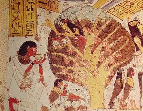 Eski Mısırda, Yaşam Ağacı. Fotoğraf:babogahmet.blogcu.com