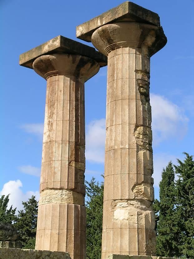 Zeus Tapınağı'nın sütunları. Fotoğraf: Füsun Kavrakoğlu