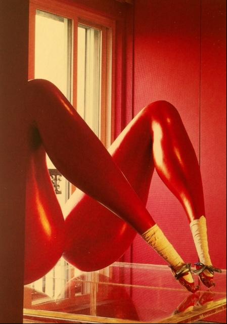East Venus No 2, Lou Xu. 1956 doğumlu Çinli sanatçı, 1989 yılında tek tema üzerinde çalışma kararı aldı ve ilk seçimi kadın bacakları oldu. Gövdenin diğer bölümlerini göstermeyen, üst kısımları tombul, bilekte neredeyse sıfırlanacak kadar incelen bacakları yapmaya 2005 yılına kadar devam etti. 2005 yılında yeni teması yaprak oldu. Fotoğraf: Living in China, Photos Reto Guntli, Text Daisann McLane, Taschen, 2010.