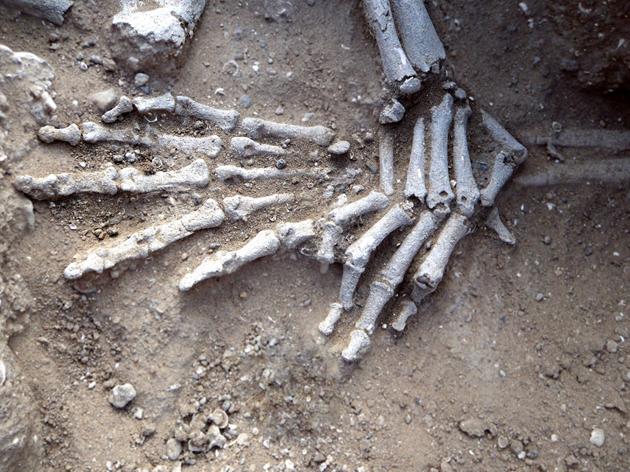 Kenya, Nataruk'ta ellerin bağlı olduğunu düşündüren bulgunun in situ fotoğrafı. Fotoğraf: Cambridge Üniversitesi Leverhulme Centre for Human Evolutionary Studies.