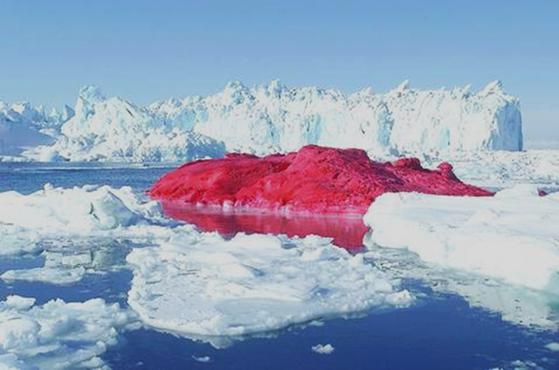 2004 yılında Danimarkalı sanatçı Marco Evaristti (1963-), 780 galon kırmızı boya, üç itfaiye hortumu ve yirmi kişilik ekibi ile Grönland'da bir buzulu kırmızıya boyadı. Amacı, sınırları ve çevre kirliliğini protesto etmekti. Aynı şeyi 2007 yılında Mont Blanc'ın tepesinde yapmaya teşebbüs ettiğinde tutuklandı. Kamusal alana tecavüz olarak algılanıp ceza alan davranış, sanat adına doğayı bu şekilde sahiplenip dönüştürmeye insanın ne ölçüde hakkı var sorusunu da gündeme taşımıştı. Fotoğraf:www.taipeitimes.com