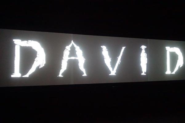 David, Guan Xiao; üç kanallı, renkli ve sesli video enstalasyonu, 2013. Çinli heykeltıraş ve video sanatçısı Guan Xiao (1983-), Rönesans'ın ünlü ustası Mikelanj'ın David adlı heykelini ele alıyor. Sanatçı ünlü heykelin kupalarda, önlüklerde ve daha pek çok ıvır zıvırın üzerindeki izini sürerek bu kült eserin değerinin düşürülüşünü vurguluyor. Görüntülere sanatçının söylediği bir şarkı eşlik ediyor. Şarkının sözleri de eserin ana fikrini destekliyor. David, sadece kaydettiğimizi, anmadığımızı; sanat eserinin metalaştırılmasını, ticarileştirilmesini, anlamının içinin boşaltılmasını vurgulayan alegorik ve eleştirel bir çalışma. Fotoğraf: Füsun Kavrakoğlu, Venedik Bienali, 2017.